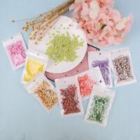 10g Fruit slice clay sprinkles for filler supplies fruit mud decoration for kiYB