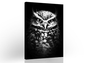 Owl Black White Abstract Modern Canvas Wall Art Living Room Painting Home Decor