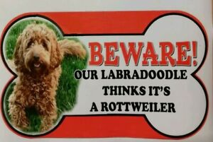 Labradoodle Beware of the dog sign 12cm x 21cm Laminated