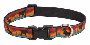 "Lupine 1"" Moose on the Loose 12-20"" Adjustable Collar"
