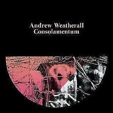 Consolamentum von Weatherall,Andrew (2016)