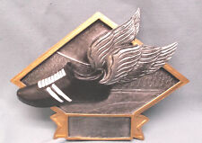 Track trophy award resin plate winged shoe Dps24