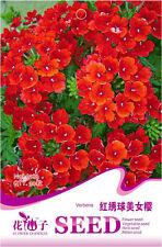 Original Package 30 Red Verbena Seeds Red Hydrangea Verbene Hybride Flowers A183