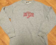 Detroit Red Wings Youth Large 14-16 Sewn Long Sleeve Sweatshirt Sweater NHL Gray