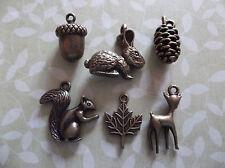 6 pc Antiqued Brass Woodland Charm Set Rabbit Squirrel Deer Leaf Acorn Pine Cone