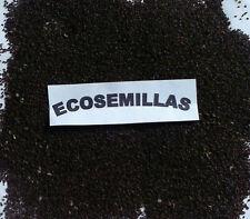 Llanten, plantago mayor, llantén más de 800 semillas ECOLOGICAS Compra 2 envío 3