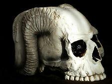 akt,frau,Angel of Hades,Skull,Angel,17x13cm,Alchemy,schädel,engel,totenkopf