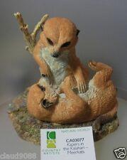 "COUNTRY ARTISTS  ""KAPERS IN THE KALAHARI"" MEERKATS  CA03077  MINT IN BOX"