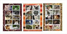 CATS domestic cat 7 SOUVENIR SHEETS MNH IMPERFORATED