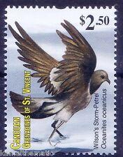 Wilsons Storm Petrel, Water Birds, Gr. of St. Vincent 2011 MNH - B14