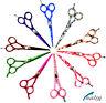 Ciseaux pour Cheveux de Coiffeur Friseursalonschere Salon Coiffure / Beauté