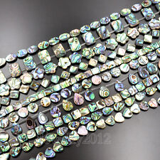 Natural Multi Color Abalone Shell Coin Square Flat Oval Gemstones Beads 7.5""