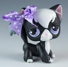 Littlest Pet Shop Cat Longhair No # Tuxedo Black With Lavender and Blue Eyes