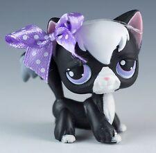 Littlest Pet Shop Cat Longhair No # Tuxedo Black With Lavender and Blue Eyes