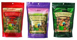 3 Bags LAFEBER'S NUTRI-BERRIES PARROT FOOD El Paso Sunny Orchard Tropical Fruit