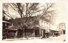 Real Photo Postcard Largest Walnut Tree in Placerville, California~129145