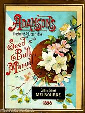 1898 Adamson's Bulb Vintage Flowers Seed Packet Catalogue Advertisement Poster