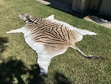 A+ grade genuine Burchell Zebra Hide Rug - 100% Authentic African -