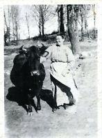 Woman Cow Steer Vintage Photo Mary Striney Strojny Hudzik Yavorski Pennsylvania