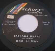 BOB LUMAN - Jealous heart/go on home boy 45 HICKORY 1307 VG++ Vinyl 1965 EX