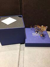 Swarovski Crystal Scs Tiger Cub Standing #1016677
