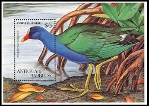 ANTIGUA & BARBUDA ANIMAL WATER BIRD GALLINULE MNH S/S 1995 #SS1944 Mi BL 321