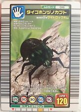 SEGA Mushiking Eupatorus siamensis Japanese Playing Cards Insect Game Japan