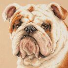 NEW UNOPENED Counted Cross Stitch KIT Magic Needle 59-21 English bulldog Animals