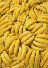 Bananas greetings card