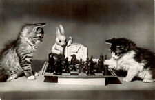 1957 Russian postcard CATS PLAY CHESS PLASTIC HARE IS REFEREE Verse on reverse