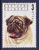 Pug Dogs Bulgaria MNH stamp 1991
