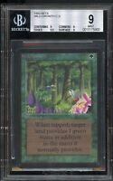 Wild Growth BETA BGS 9 QUAD+ Edges 9.5 Beckett Graded MINT Magic MTG