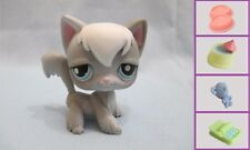 Littlest Pet Shop Cat Angora 345 and Free Accessory Authentic Lps