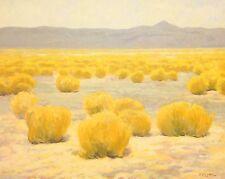 LRG 20X16 WESTERN SOUTHWEST ORIGINAL Oil Painting ART IMPRESSIONIST LANDSCAPE