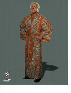 RIC Flair 8x10 PHOTO FILE WWE WWF WRESTLING CHAMP