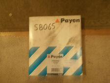 PEUGEOT 106 CYLINDER HEAD BOLTS 1.4D 1992-1996 PAYEN HBS082