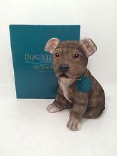 Dog Studies by Leonardo Puppy Love Brown Staffordshire Bull Terrier Figurine