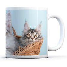 Cute Maine Coon Kitten - Drinks Mug Cup Kitchen Birthday Office Fun Gift #16053
