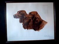 Gravure Lithographie Léon DANCHIN chien 2 SETTER Chasse Vénerie signée