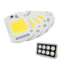 High Power LED COB Lamp Floodlight Chip 50W AC 110V 220V Input Smart IC Driver
