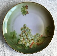 VINTAGE Hand Painted Porcelain Plate Hutschenreuther Selb Bavaria Green Grapes