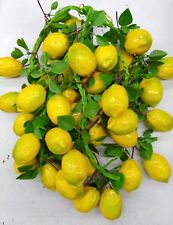 6xArtificial leaves with Lemon string  free chipping Oz stock