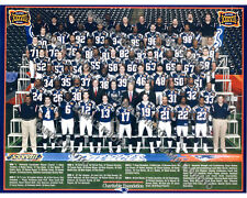 2003 NEW ENGLAND PATRIOTS SUPER BOWL 38 CHAMPIONS NFL FOOTBALL 8X10 TEAM PHOTO