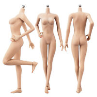 """1/6 Scale Female Medium Bust Seamless Body for 12"""" Hot Toys Phicen Action Figure"""
