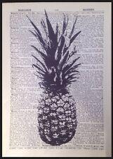 Ananas Vintage Illustrazioni Dizionario Pagina Foto Da Parete, Arte Stampa