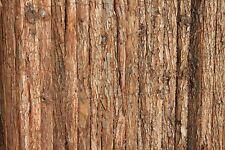 Heavy Duty Tree Bark Garden Screening Fencing Rolls 1.8M Tall and 3.8M Long