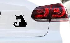 Angry Cat Auto Aufkleber Katze Kittn Sticker Fun JDM Decal Premium Folie