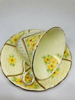 VINTAGE Wellington England No. 4659 Best Bone China Tea Cup & Saucer Set Floral