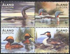Aland, 2013 WWF/HUARD/grèbes/Canards/Oiseaux/Nature/conservation 4 V BLK (n41610)