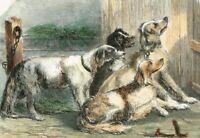 1852 Antique Print - Group of Hunting Dogs, Hounds, Hand-Colored - Chevu